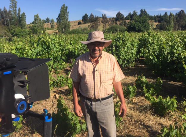 Héctor Espinoza, dueño de Viña Tierra Firme